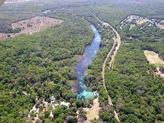 Rainbow River Rainbow River, Florida Springs, Sunshine State, World, Water, Travel, Outdoor, Beautiful, Gripe Water