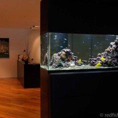Office Marine Aquarium