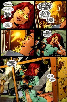 birds of prey Barbara Gordon, Dc Comics, Batgirl And Robin, Im Batman, Batman Family, Birds Of Prey, Nightwing, Comic Covers, Dc Universe