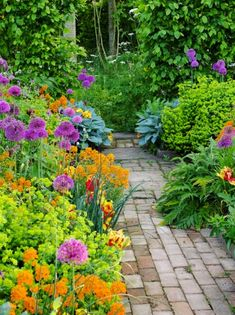 Cottage Garden Design, Cottage Garden Plants, Monty Don Longmeadow, Longmeadow Garden, 10 Year Plan, World 2020, Types Of Plants, Growing Vegetables, Evergreen