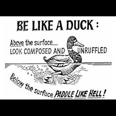 the #duck #mindset