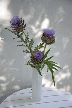 Artischocken in Vase