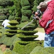 Calling it Home: Topiary Gardens