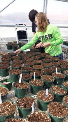 Great long term lab. Plant Science students are challenged to grow as many…