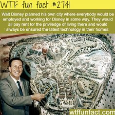 Walt Disney Ideas for Disney Land City - WTF fun facts I donno if that's awesome or terrifying! Wtf Fun Facts, True Facts, Funny Facts, Random Facts, Crazy Facts, Random Stuff, Disney Love, Disney Ideas, Punk Disney