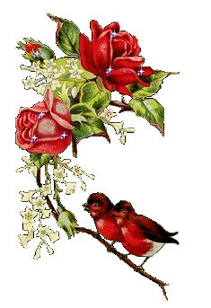 Roses Gifs images and Graphics. Roses Pictures and Photos. Flowers Gif, Pretty Flowers, Beautiful Gif, Beautiful Roses, Hearts And Roses, Red Roses, Gif Animé, Animated Gif, Gifs