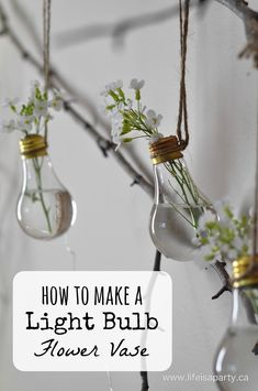 How to Make A Light Bulb Flower Vase: Turn your old burnt out light bulbs into a hanging flower vase.