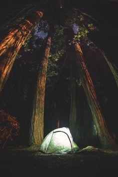 Pfeiffer Big Sur State Park by Jonathan H. Lee via wnderlst. The Stars above...