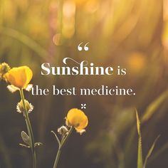 Uplifting Quotes, Inspirational Quotes, Spring Quotes, End Of Winter, African Proverb, Lake Beach, Sunday Quotes, Local Attractions, Summer Glow
