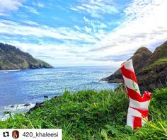 @420_khaleesi with @repostapp  Saying goodbye to Oregon has never been harder than sitting by the ocean wrapped up in a cozy hoodie smoking a bong legally  love my state  . @piecemakergear with the hookup   Blaze YOUR own trail & tag us in you pics and we will repost #piecemakergear.com #piecemaker #BlazeYourOwnTrail #siliconewaterpipe #thc #ganja #420 #budtender #hightimes #maryjane #marijuana #siliconebongs #suicidegirls #stoner #siliconebong #dabbing #weedsociety #kief #smokeweedeveryday…