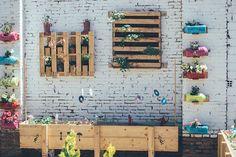 jardin vertical y huerto urbano cole-14