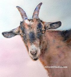 """""""Ginger Goat"""", watercolor goat painting by animal artist Teresa Silvestri.  Original sold, but prints & cards available."""