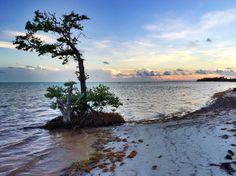 Sunset on Long Key in the Florida Keys