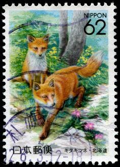 Here is an image of a stamp depicting a pair of arctic foxes (Vulpes lagopus) in summer, when their fur grows brown, printed by photogravure, and issued by Japan (Hokkaido Prefecture) on May 29, 1992, Scott No. Z119.