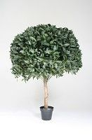 Laurel Big Ball Topiary 120cm