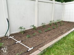 Ever wondered how to install a drip watering system for the garden? It is really easy to do and makes watering your garden so easy. Drip Watering System, Garden Watering System, Drip System, Water Garden, Herb Garden, Vegetable Garden, Home And Garden, Garden Inspiration, Garden Ideas