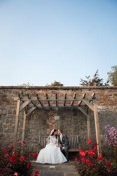 Farnham Castle wedding photography rose garden bench kiss