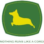 Nothing runs like a #corgi