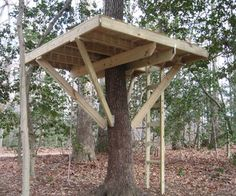 Tree fort tutorial