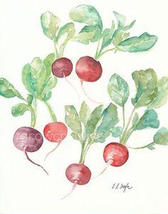 Original Aquarell-Radieschen-Gemälde, 8 x 10, rot, weinrot, lila, grün, Gemüse Kunst, Küche décor