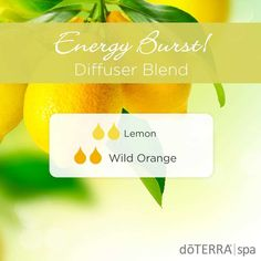 I have all you need to know about doTERRA wild orange essential oil uses including DIY recipe and a whole bunch of food and diffuser recipes. Essential Oils For Thyroid, Lemon Essential Oils, Essential Oil Uses, Helichrysum Essential Oil, Eucalyptus Essential Oil, Oils For Energy, Wild Orange Essential Oil, Essential Oil Diffuser Blends, Doterra Diffuser