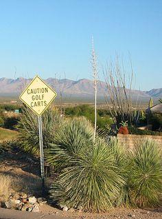 Green Valley, Arizona - Wikipedia, the free encyclopedia