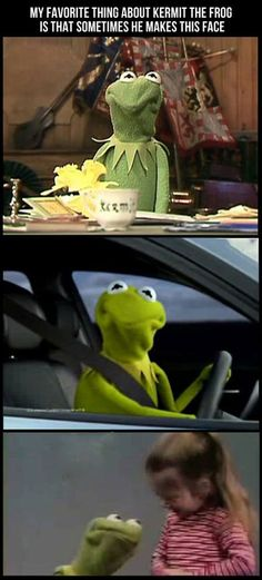 My favorite thing about Kermit.