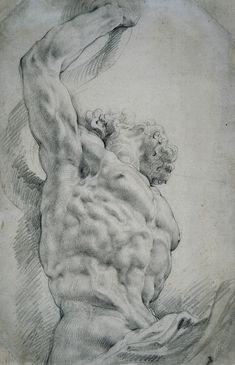 Peter Paul Rubens Torso des Laokoon in Dreiviertelansicht, um Peter Paul Rubens, Anatomy Sketches, Anatomy Drawing, Anatomy Art, Human Figure Drawing, Life Drawing, Painting & Drawing, Städel Museum, Academic Art
