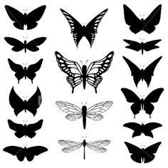 Spectacularly poetic shapes . . . butterfly silhouettes Royalty Free Stock Vector Art Illustration