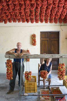 Stefano Scatà Food Lifestyle and Interiors photographer - Pomodorino piennolo del Vesuvio