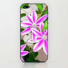 Clematis Trio iPhone & iPod Skin by Shelia Kempf ArtWorks - $15.00