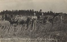 Foley is a city in Baldwin County, Alabama, United States. The 2010 census lists the population of the city as 14,618. Street Scene of Foley ca. 1935 (Alabama State Archives0  Foley, Alabama postcard ca. 1915 Cutting and Threshing40 Acres ... Read More
