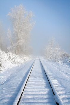winter railroad tracks