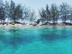Semak Daun Island #Indonesia