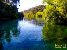 Waikato river, near
