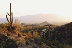 a desert sunrise shot by Kevin Russ