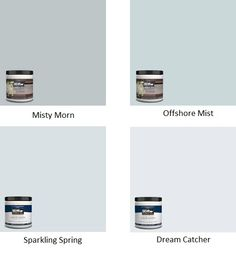 Behr Blue Grays