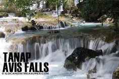 Last Sunday, my colleague Alaric Yanos and I went to the beautifulTanap Avis Falls in the town of Burgos in Ilocos Norte. Ilocos, Waterfalls, Niagara Falls, Philippines, To Go, Nature, Travel, Outdoor, Norte