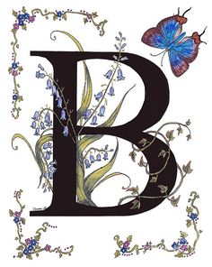 Letter B for bluebells and a blue hairstreak butterfly