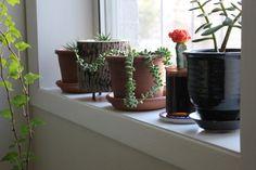 How To Paint Windowsills & Window Trim Apartment Therapy Tutorials