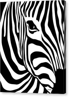 How fast is a zebra? An adult zebra can run at 64 km/h mph) when galloping at full speed. Both Grevy's zebra and Burchell's zebra have this same top speed. Zebra are slower than horses but can run in a zigzag pattern to avoid predators. Arte Zebra, Zebra Art, Zebra Painting, Zebra Drawing, White Art, Black And White, Lion Print, Desenho Tattoo, Home Decor Paintings