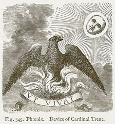 The endless rebirths of the legendary Phoenix – Historical articles and illustrations Medieval Drawings, Alchemy Art, Esoteric Art, Phoenix, Black Magic Woman, Occult Art, Christian Symbols, Mythological Creatures, Antique Art