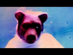 Moby - A Case For Shame (with Cold Specks) - Official video - YouTube