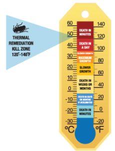 Bed Bugs Kill Temperature Cold