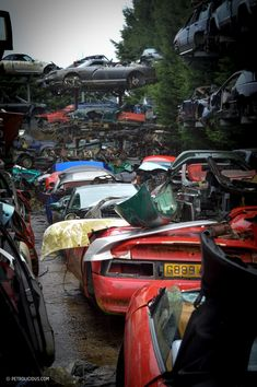 Like all junkyards, there's an element of rebirth and rejuvenation among the twisted metal