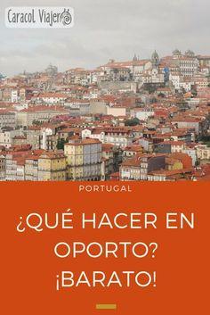Qué hacer en Oporto plan barato: tomar vino, comer los pasteles de Belén, visitar la librería de H. Potter y más...