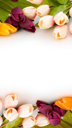 flowers wallpaper and desktop background 106203