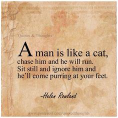A man is like a cat