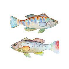 Aquarell Fisch drucken.  Bunte Fische Wandkunst.