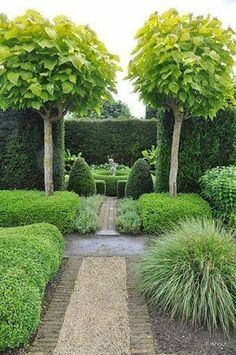 Landscaping And Outdoor Building , Great Small Trees For Landscaping : Small Trees For Landscaping Formal #Garden  Formal #Garden Inspiration, European Garden Inspiration - for Spot Design Studio (www.spotdesignstu...)